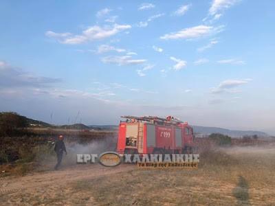 Νεκρός εντοπίστηκε ηλικιωμένος κατά τη διάρκεια κατάσβεσης πυρκαγιάς στην Χαλκιδική