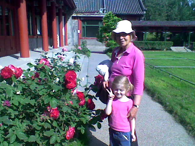 Roses in Soong Chingling's garden, May 2008