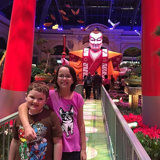 We visited the botanical garden at The Bellagio.