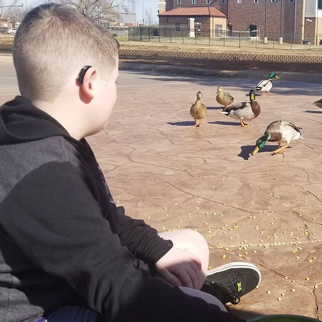 Feeding the ducks with Hero yesterday