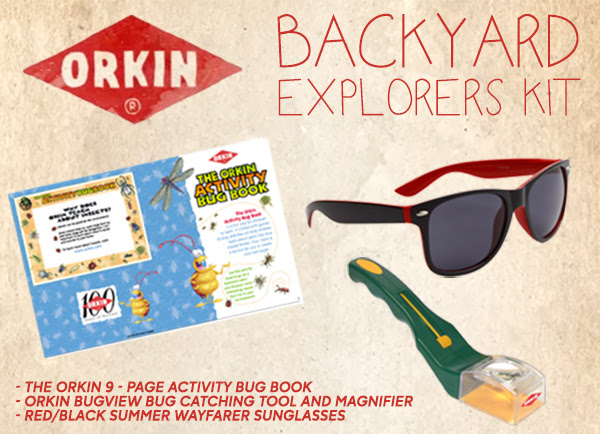 backyard explorers kit