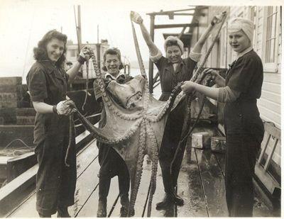 Women_octopus_FWC