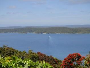 New Zealand. Ulva Island, Paterson Inlet, Stewart Island.