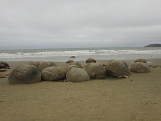 New Zealand. Moeraki Boulders, Koekohe Beach, Otago.
