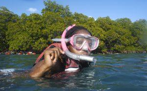 snorkeling virgin islands