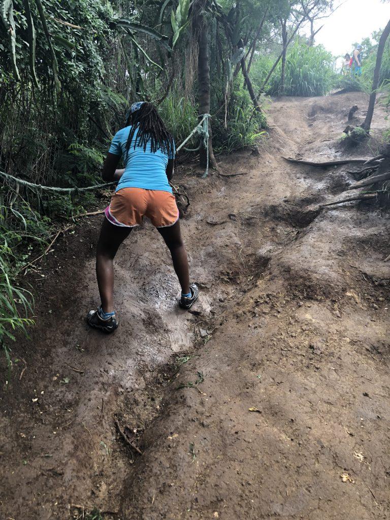 Trail head to Lanikai pillboxes