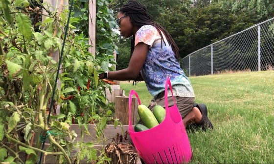 vegetable gardening in north georgia with erica rascon