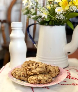 Chocolate Chip Pecan Oatmeal Cookies © 2018 ericarobbin.com | All rights reserved.