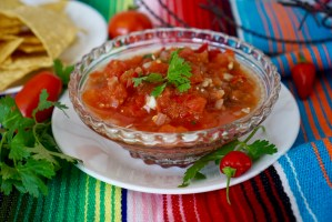Homemade Salsa © 2018 ericarobbin.com | All rights reserved.