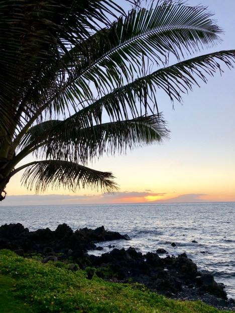 Wailea Sunset © 2018 ericarobbin.com | All rights reserved.