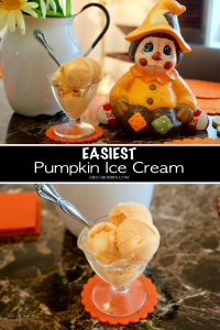 Easiest Pumpkin Ice Cream © 2018 ericarobbin.com | All rights reserved.