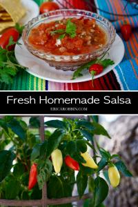 Homemade Salsa © 2018 ericarobbin.com   All rights reserved.