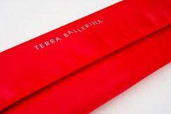 Terra Ballerina Artistic Travel Gear Basic Art Brush Set