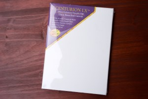 "Centurion LX Linen Canvas 3/4"" Single 9X12"" by Jerry's Artarama Art Supplies © 2019 ericarobbin.com 
