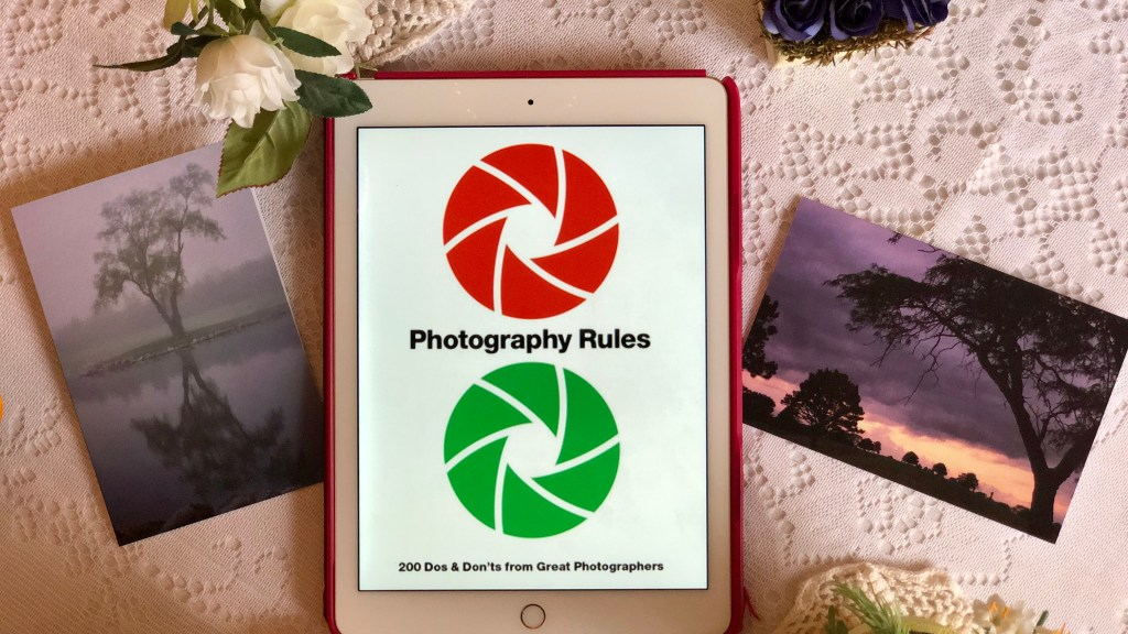 Photography Rules Essential Dos and Don'ts from Great Photographers by Paul Lowe | Erica Robbin