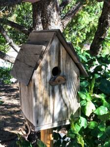 Wood Bird House | Erica Robbin
