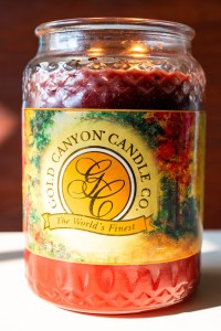 Gold Canyon Candle Pumpkin Spice | Erica Robbin