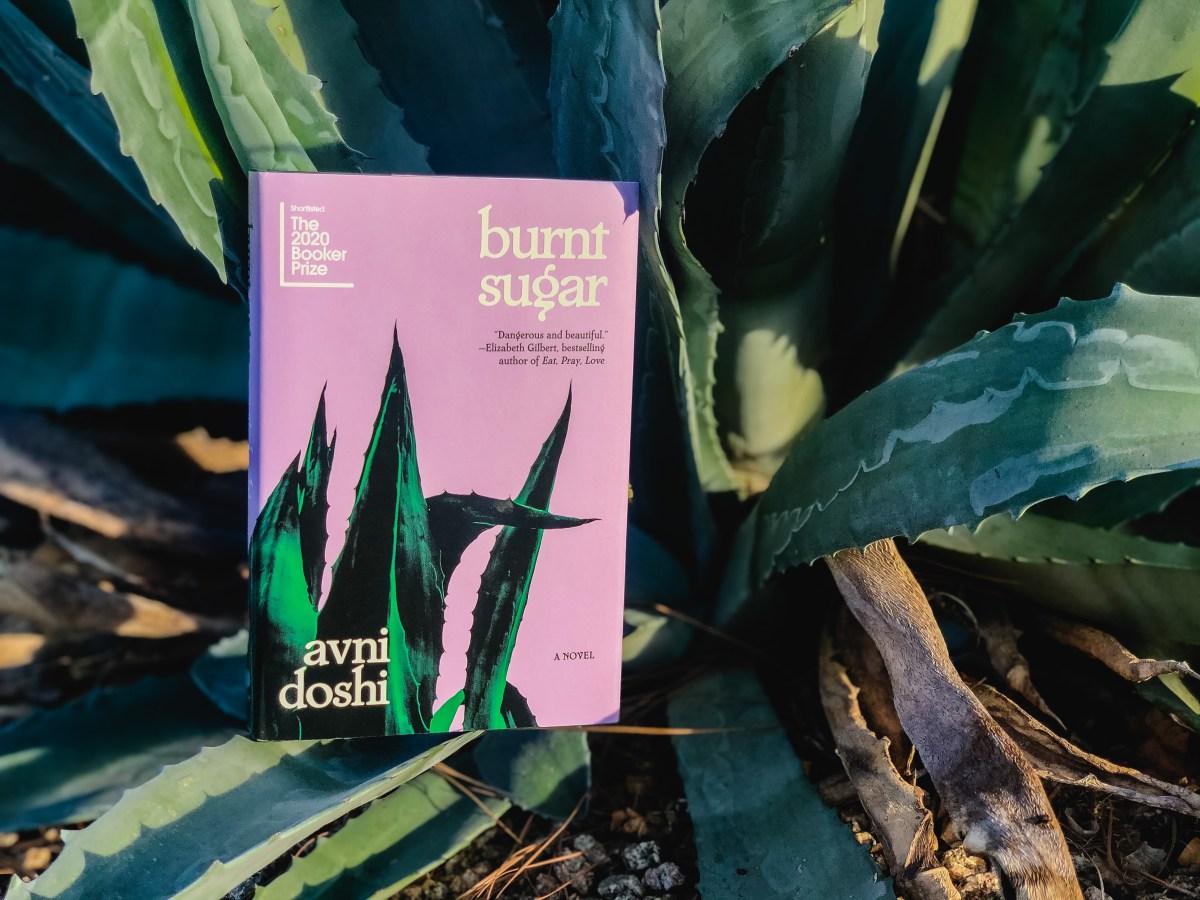Burnt Sugar by Avni Doshi   Erica Robbin