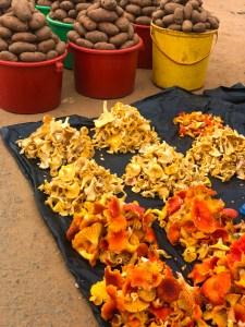 Mushrooms at Malawi Market   Erica Robbin