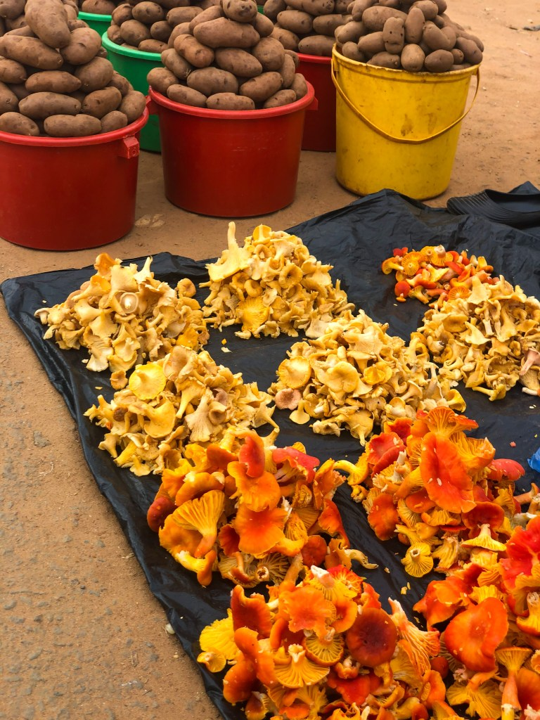 Mushrooms at Malawi Market | Erica Robbin