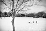winter landscape of children in park Reno, NV