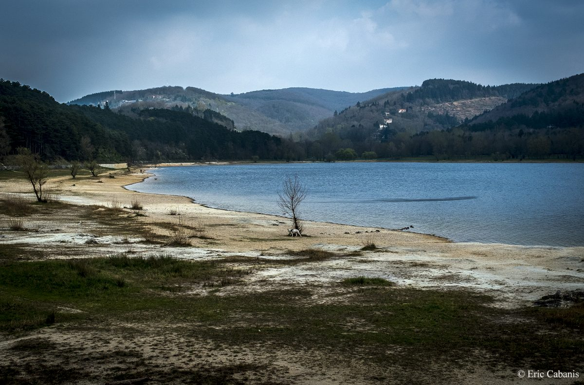 Lac de la Ganguise près de Toulouse, avril 2019 Lac de la Ganguise near Toulouse, April 2019