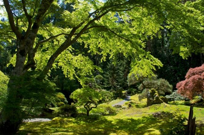 Japanese Garden: Design by Fujitaro Kubota