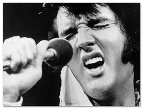 Elvis & Microphone