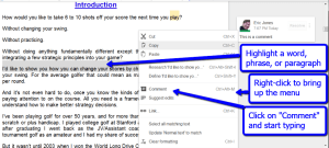 google_drive_comment_instructions