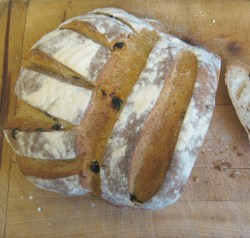 rosemary and raisin sourdough bread