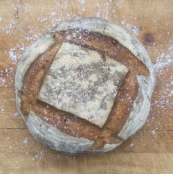 apple honey and linseed sourdough loaf