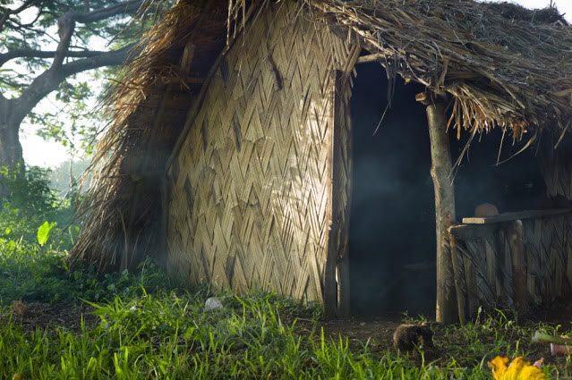 Interview with Adam Marelli about His Journey to the Remote Island of Tanna