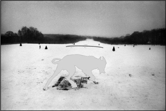 I photoshopped the dog to make it whiter. You can still see the outline of the dog - but it is much harder to see against the background now.