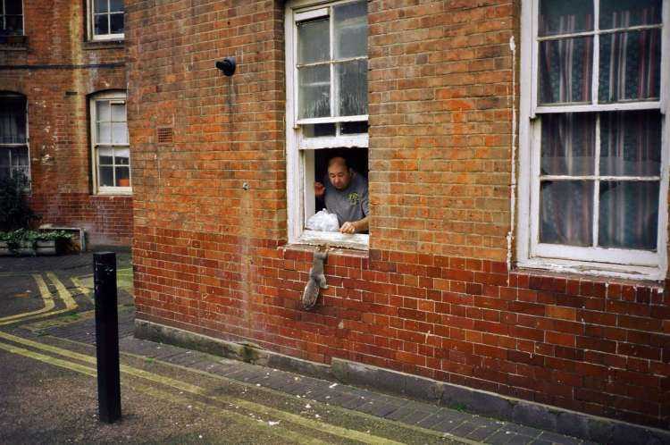 stephen-leslie-squirrel-landlord