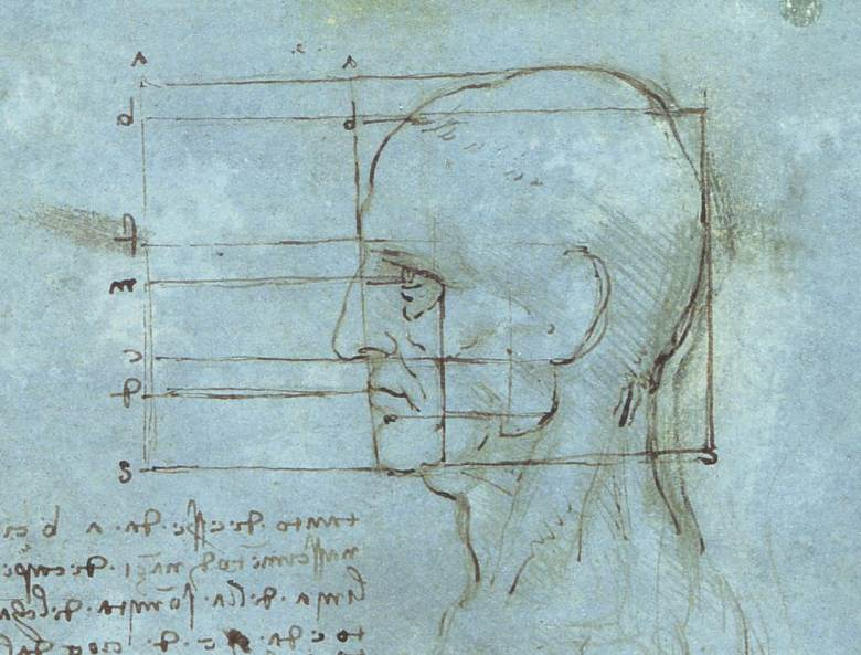 Proportions_of_the_Head