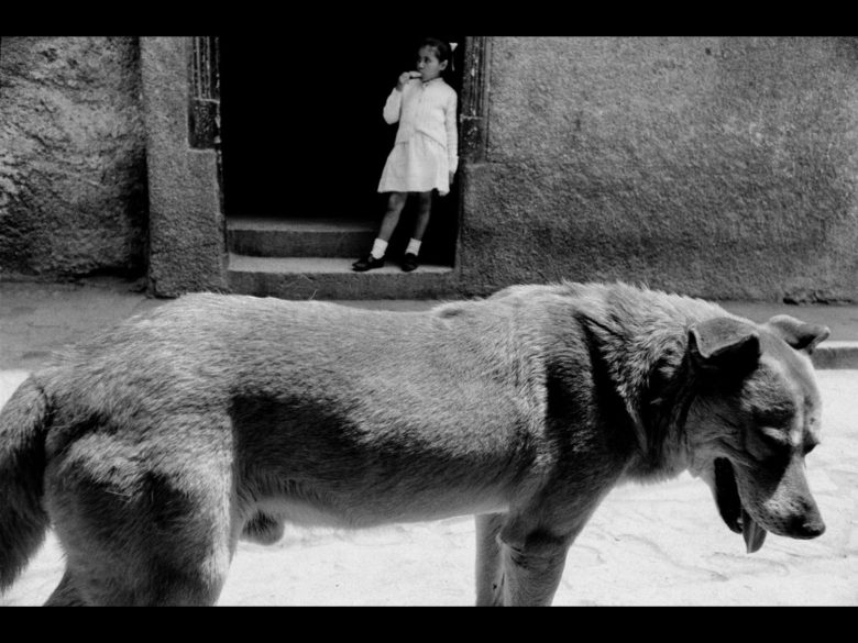 Sergio Larrain, surreal photo with girl on top of dog