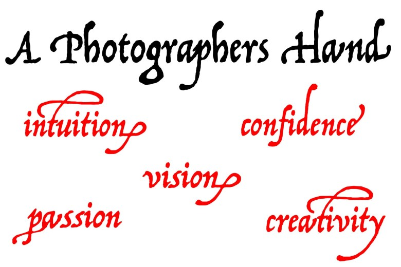 A photographers hand: Intuition, confidence, vision, passion, creativity.