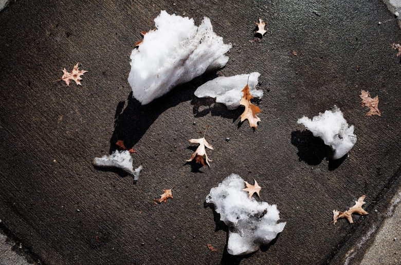 self preservation ice boston