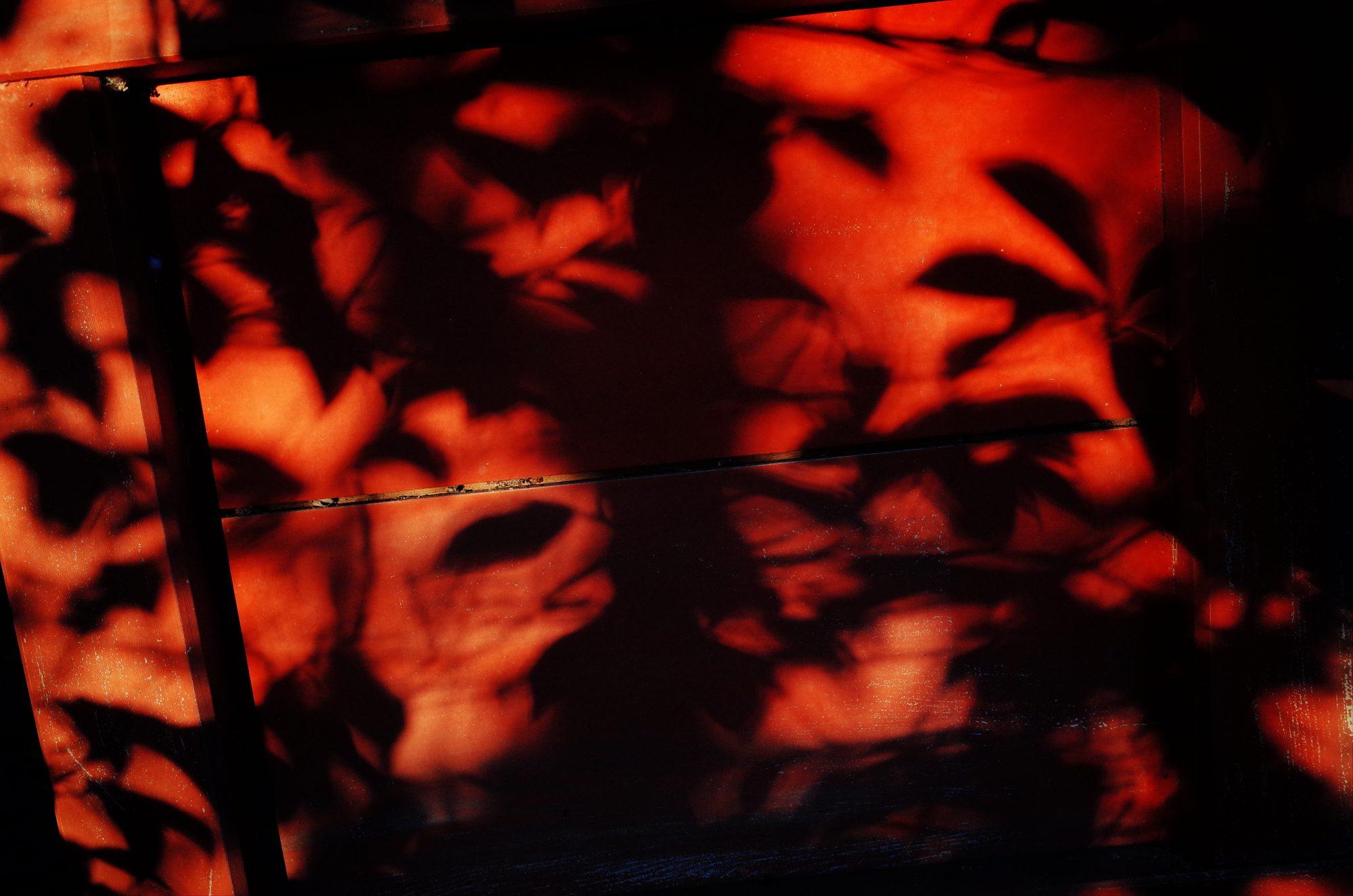 Red shadows. Uji / Kyoto, 2018