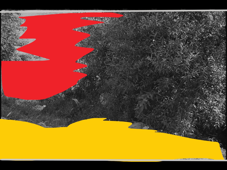 Henri Cartier-Bresson Compositions00121