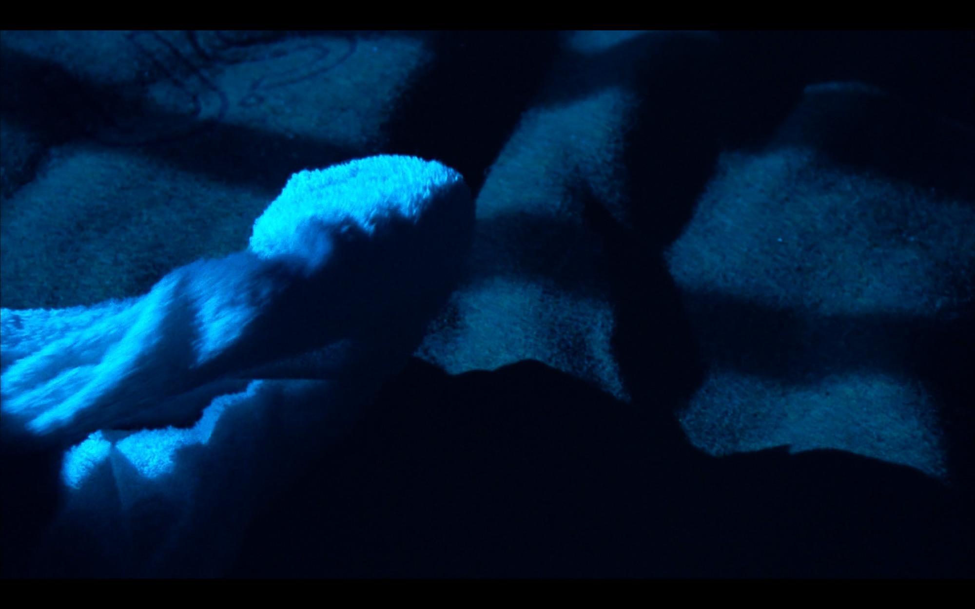 cold dark human nature-4