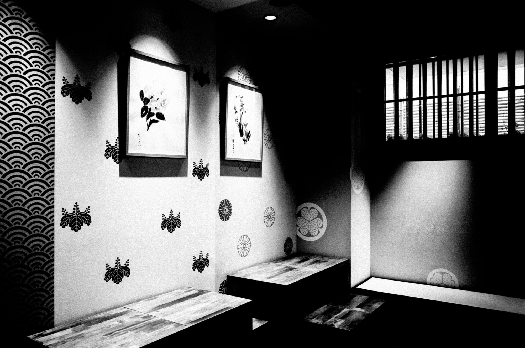 dark skies over tokyo - eric kim11