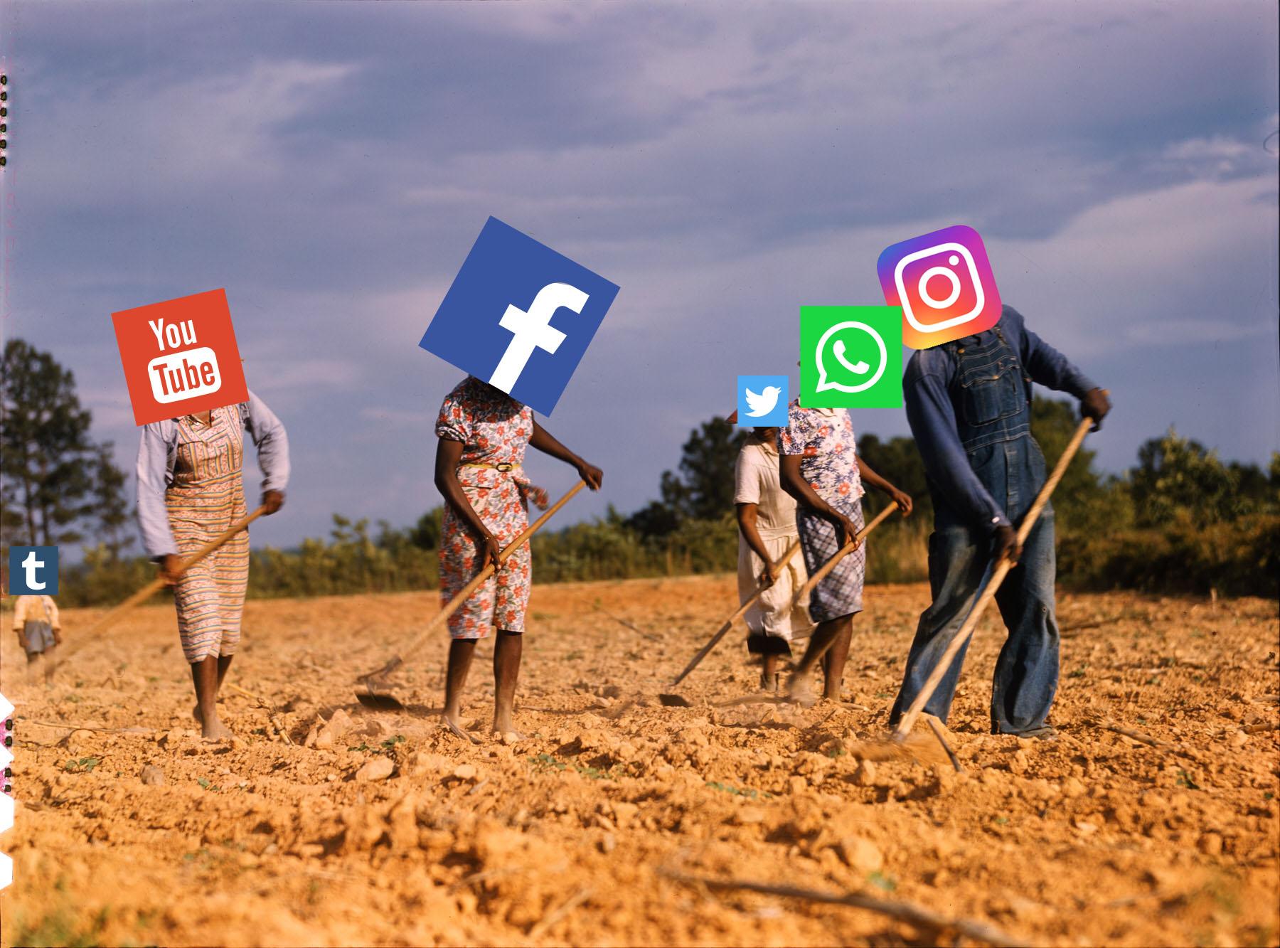 digital share cropping eric kim delano