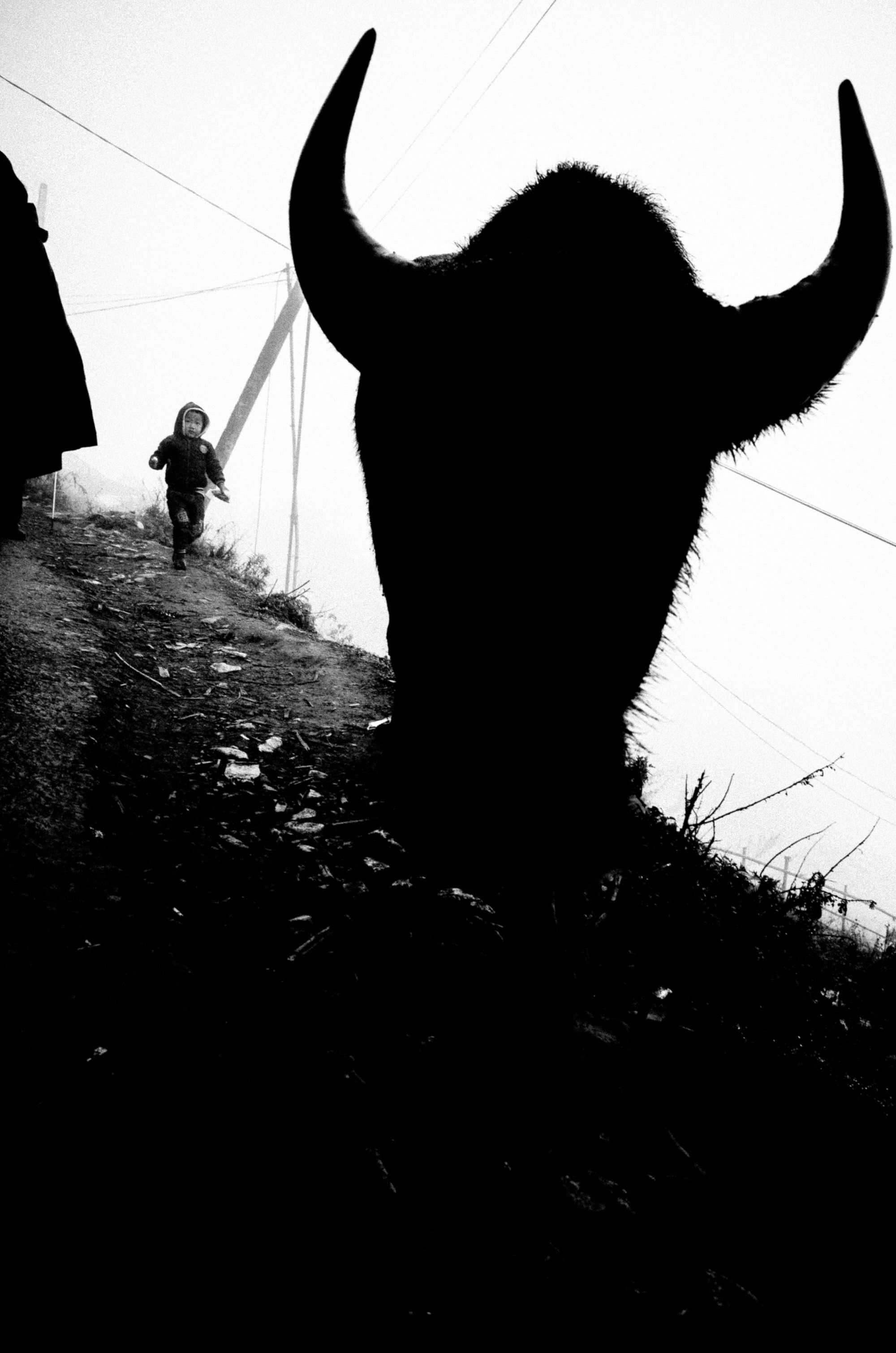 eric kim photography surreal 10
