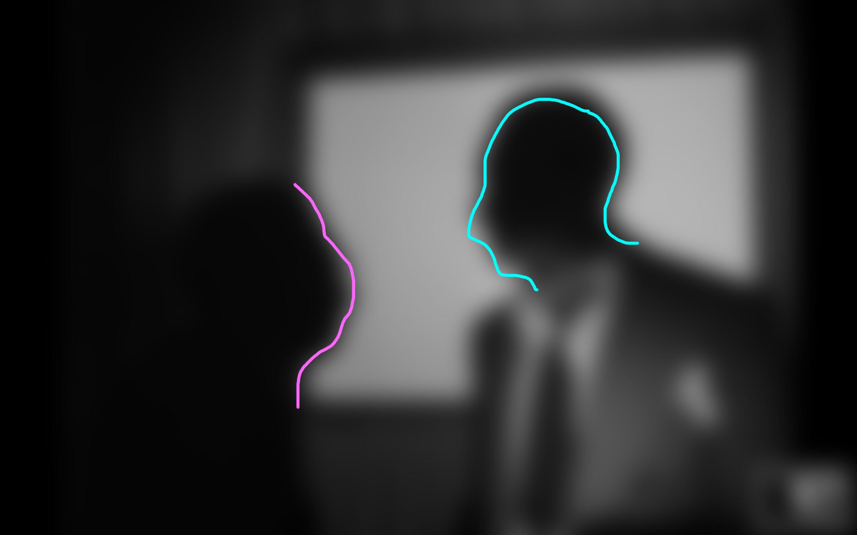 silhouette 5