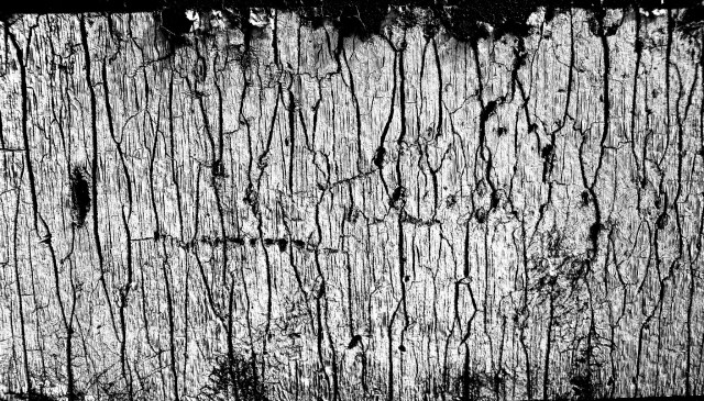 Abstract grit