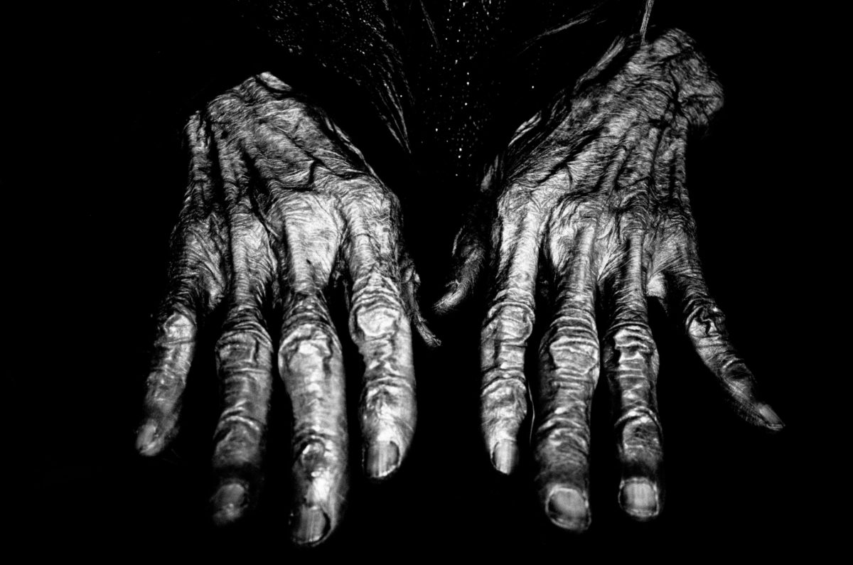 Hands of a 92 year old woman in Hanoi.