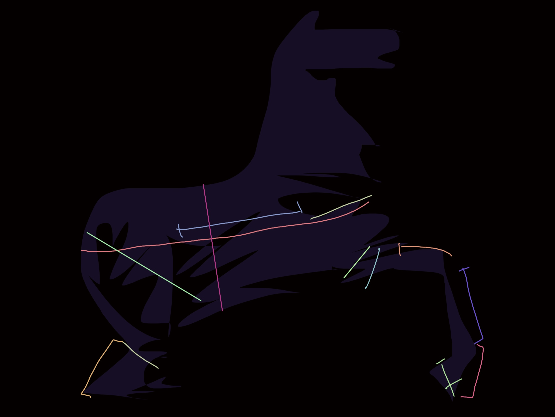 Horse ERIC KIM Trojan
