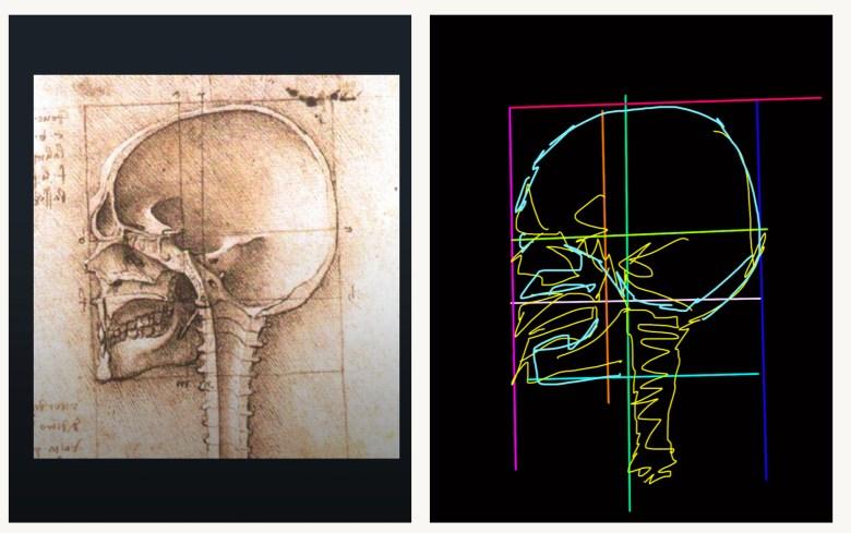 Skull da Vinci
