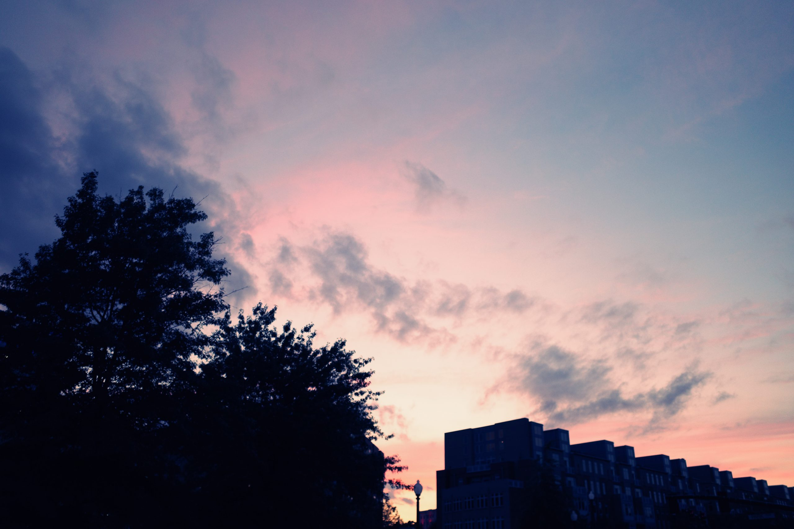 pink cotton candy sunset